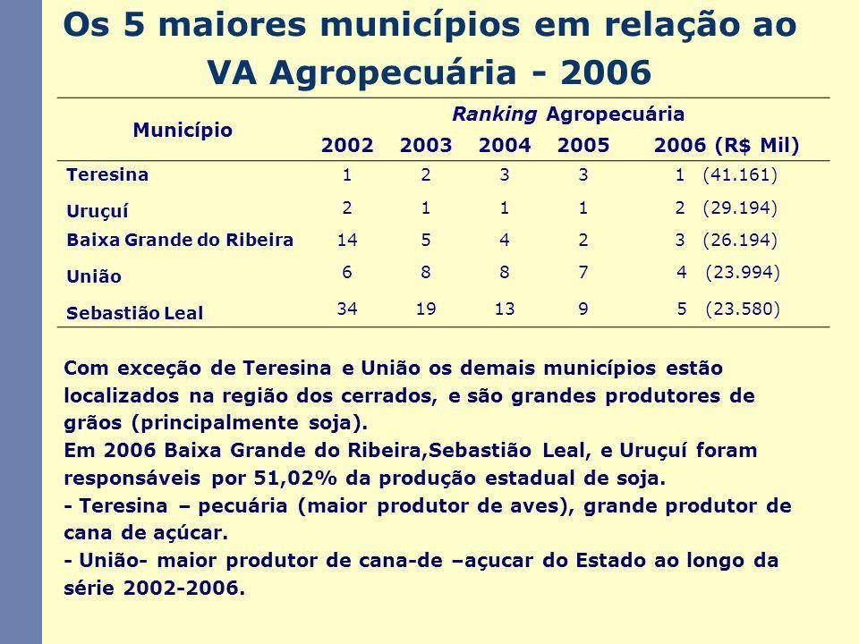 Os 5 maiores municípios em relação ao VA Agropecuária - 2006 Com exceção de Teresina e União os demais municípios estão localizados na região dos cerrados, e são grandes produtores de grãos (principalmente soja).