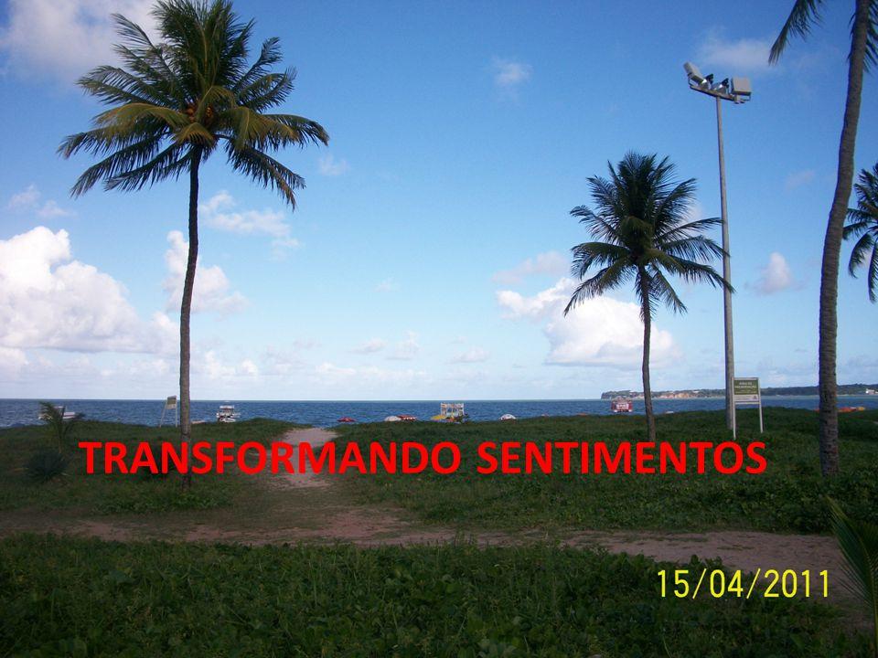 TRANSFORMANDO SENTIMENTOS