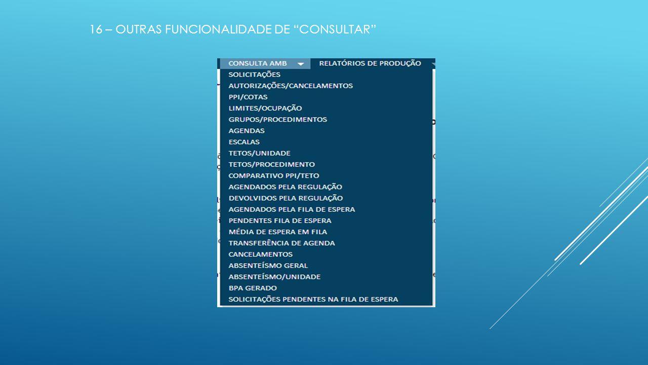 16 – OUTRAS FUNCIONALIDADE DE CONSULTAR