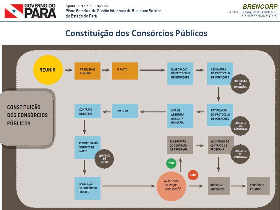 BRENCORP CONSULTORIA, MEIO AMBIENTE E EMPREENDIMENTOS Constituição dos Consórcios Públicos Apoio para a Elaboração do Plano Estadual de Gestão Integra