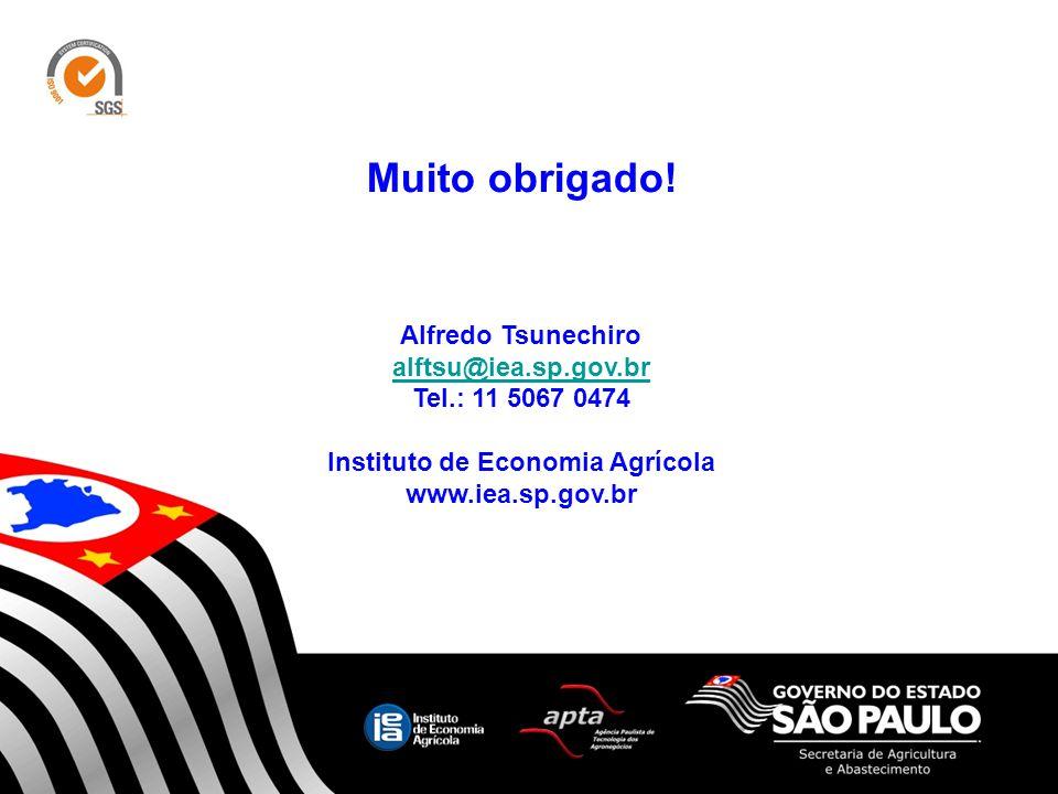 Muito obrigado! Alfredo Tsunechiro alftsu@iea.sp.gov.br Tel.: 11 5067 0474 Instituto de Economia Agrícola www.iea.sp.gov.br 12