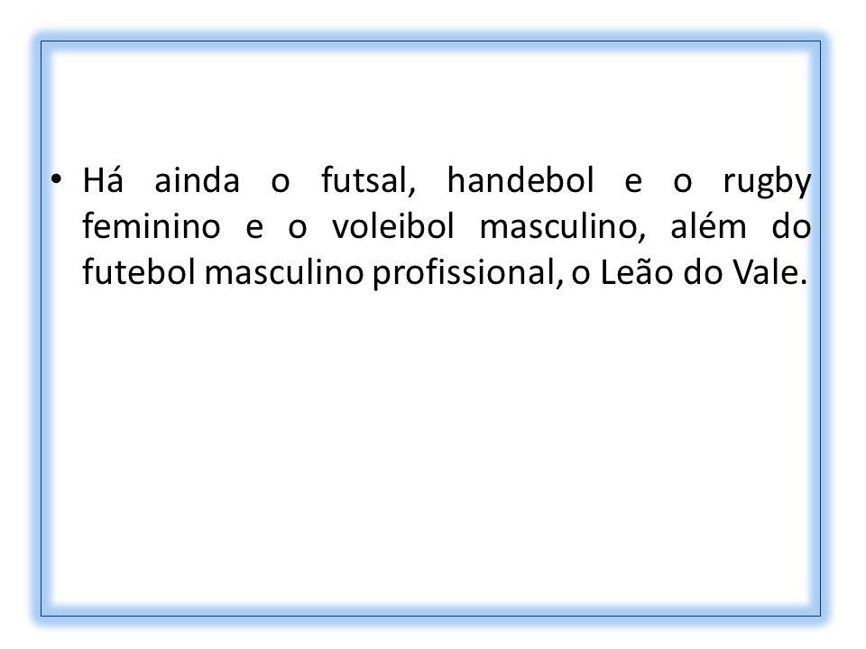 Há ainda o futsal, handebol e o rugby feminino e o voleibol masculino, além do futebol masculino profissional, o Leão do Vale.