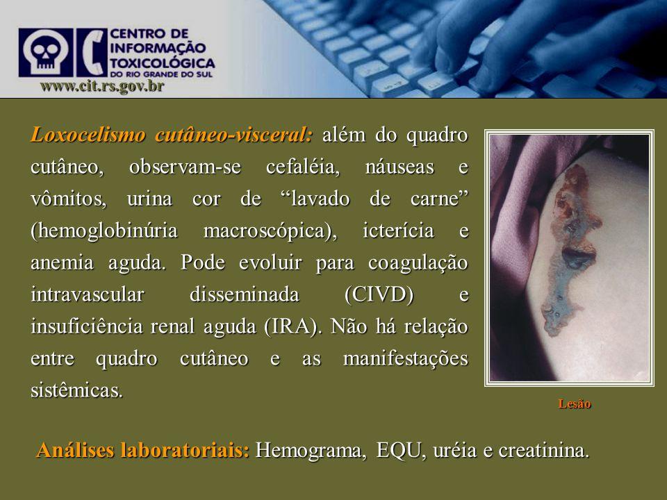 www.cit.rs.gov.br Loxocelismo cutâneo-visceral: além do quadro cutâneo, observam-se cefaléia, náuseas e vômitos, urina cor de lavado de carne (hemoglo