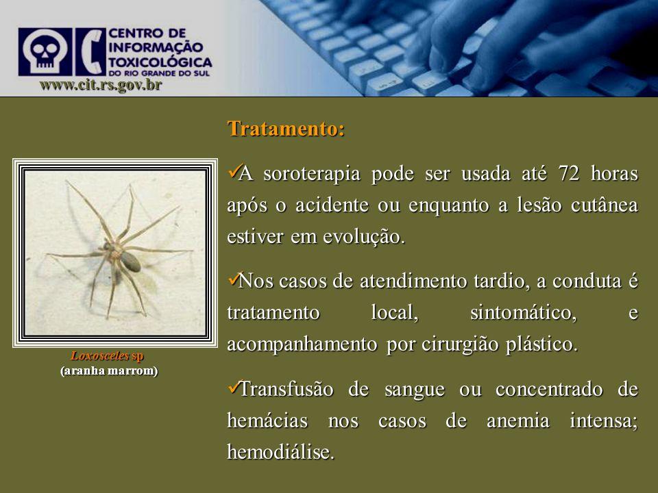 www.cit.rs.gov.br Tratamento: A soroterapia pode ser usada até 72 horas após o acidente ou enquanto a lesão cutânea estiver em evolução. A soroterapia