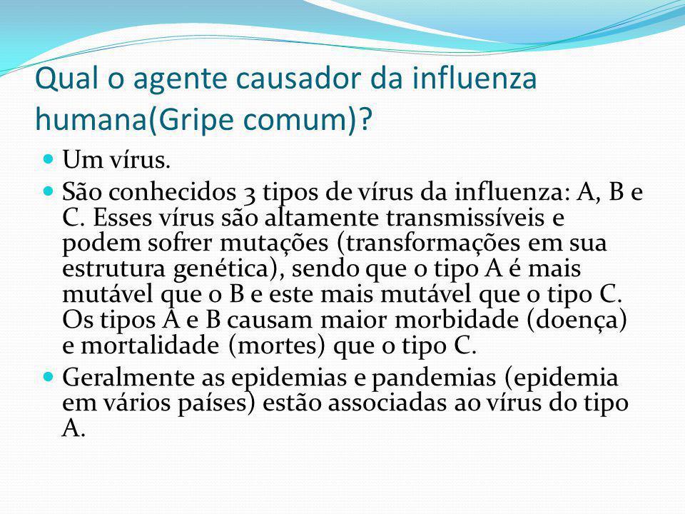 Qual o agente causador da influenza humana(Gripe comum)? Um vírus. São conhecidos 3 tipos de vírus da influenza: A, B e C. Esses vírus são altamente t