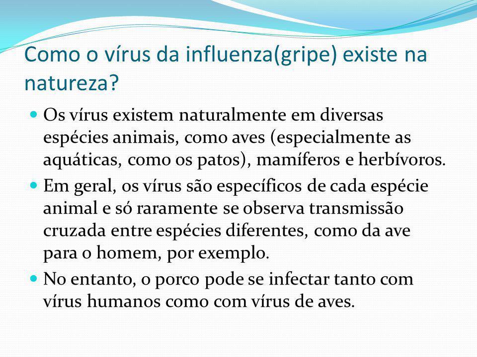 Como o vírus da influenza(gripe) existe na natureza? Os vírus existem naturalmente em diversas espécies animais, como aves (especialmente as aquáticas