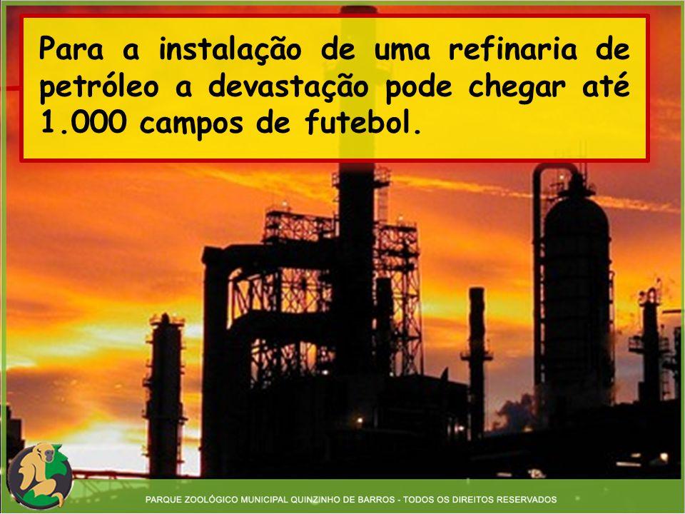 Para a instalação de uma refinaria de petróleo a devastação pode chegar até 1.000 campos de futebol.
