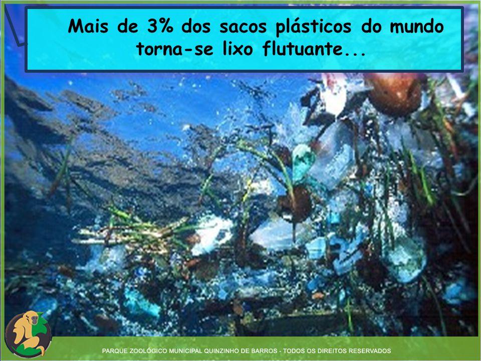 Os animais aquáticos confundem o plástico com algas, ingerindo e provocando obstrução do estômago e morte.
