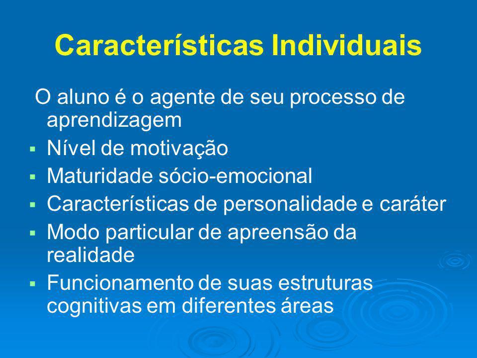 Características Individuais O aluno é o agente de seu processo de aprendizagem Nível de motivação Maturidade sócio-emocional Características de person