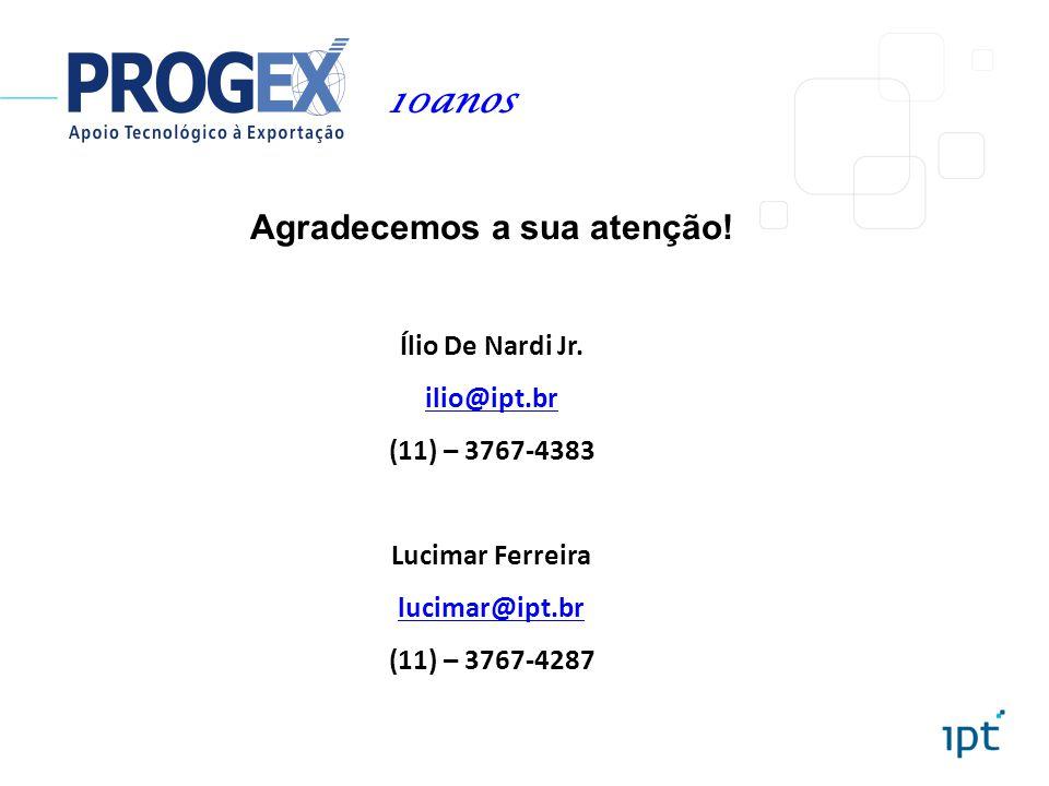 Agradecemos a sua atenção! Ílio De Nardi Jr. ilio@ipt.br (11) – 3767-4383 Lucimar Ferreira lucimar@ipt.br (11) – 3767-4287 10anos