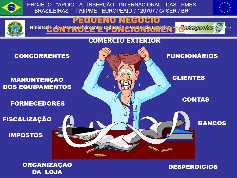 Ministério do Desenvolvimento, Indústria e Comércio Exterior 134 PROJETO APOIO À INSERÇÃO INTERNACIONAL DAS PMES BRASILEIRAS PAIIPME EUROPEAID / 12070