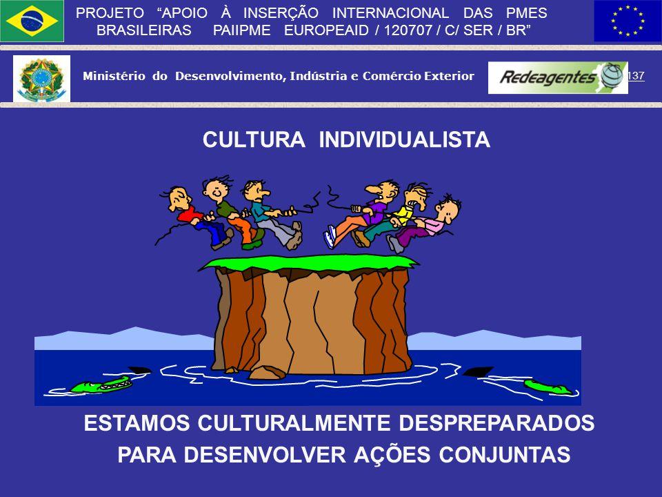 Ministério do Desenvolvimento, Indústria e Comércio Exterior 136 PROJETO APOIO À INSERÇÃO INTERNACIONAL DAS PMES BRASILEIRAS PAIIPME EUROPEAID / 12070