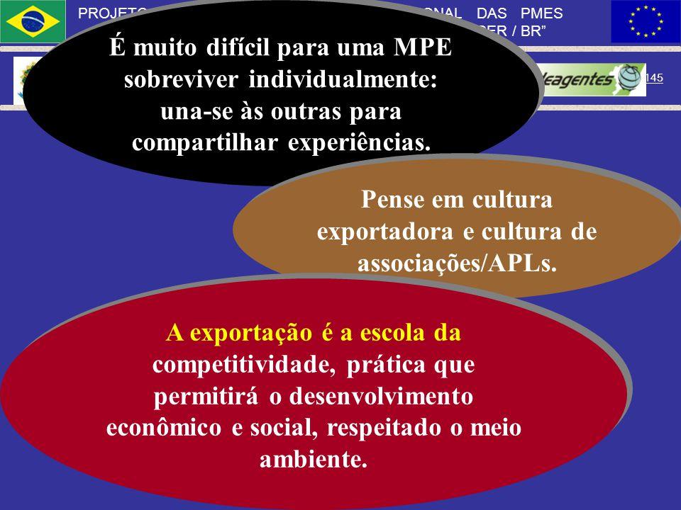 Ministério do Desenvolvimento, Indústria e Comércio Exterior 144 PROJETO APOIO À INSERÇÃO INTERNACIONAL DAS PMES BRASILEIRAS PAIIPME EUROPEAID / 12070