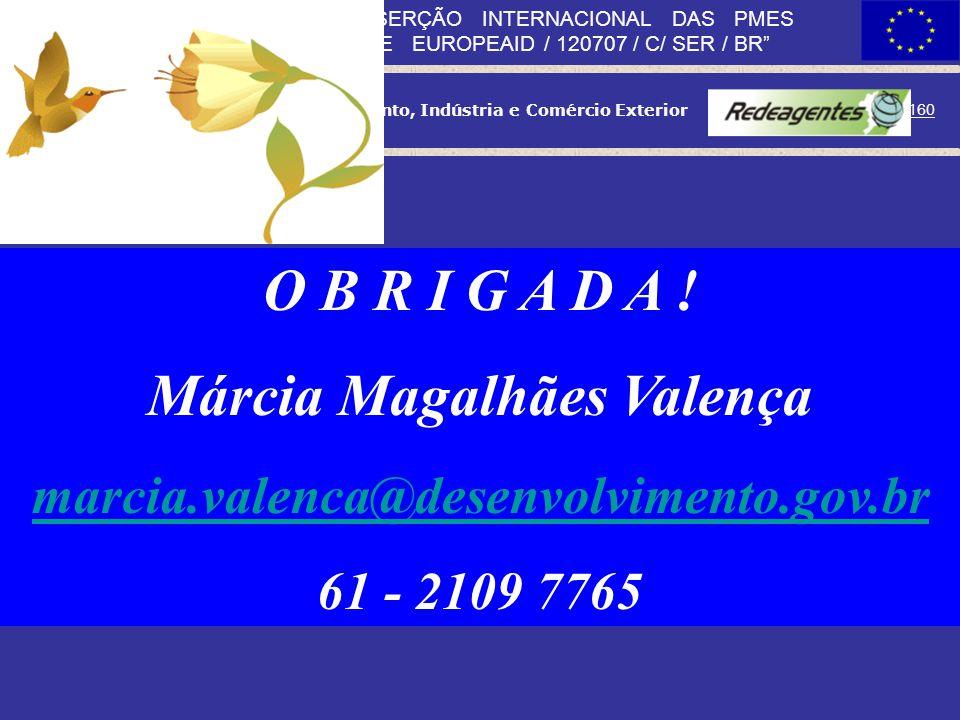 Ministério do Desenvolvimento, Indústria e Comércio Exterior 159 PROJETO APOIO À INSERÇÃO INTERNACIONAL DAS PMES BRASILEIRAS PAIIPME EUROPEAID / 12070