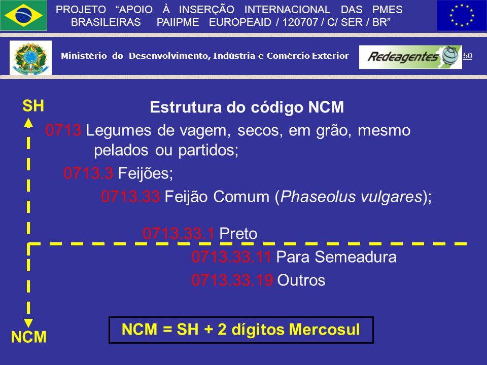 Ministério do Desenvolvimento, Indústria e Comércio Exterior 49 PROJETO APOIO À INSERÇÃO INTERNACIONAL DAS PMES BRASILEIRAS PAIIPME EUROPEAID / 120707