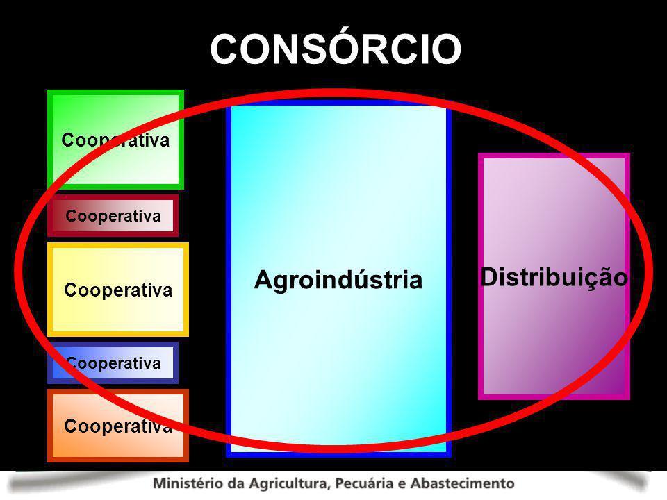 CONSÓRCIO Cooperativa Agroindústria Distribuição Cooperativa