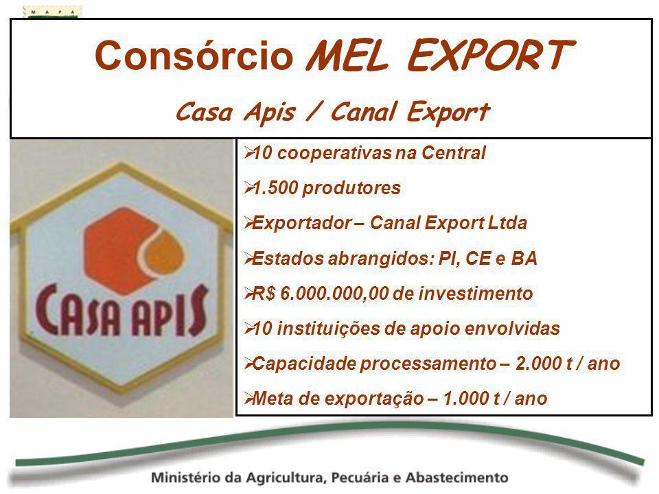 10 cooperativas na Central 1.500 produtores Exportador – Canal Export Ltda Estados abrangidos: PI, CE e BA R$ 6.000.000,00 de investimento 10 institui