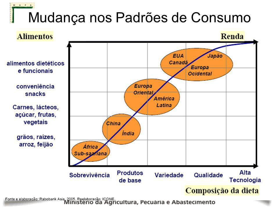 Exportações Brasileiras: Total x Agronegócio (US$ bilhões) PARTICIPAÇÃO DO AGRONEGÓCIO 41,8% 40,4% 36,8% 35,9% 36,4% 36,3% Fonte: MAPA