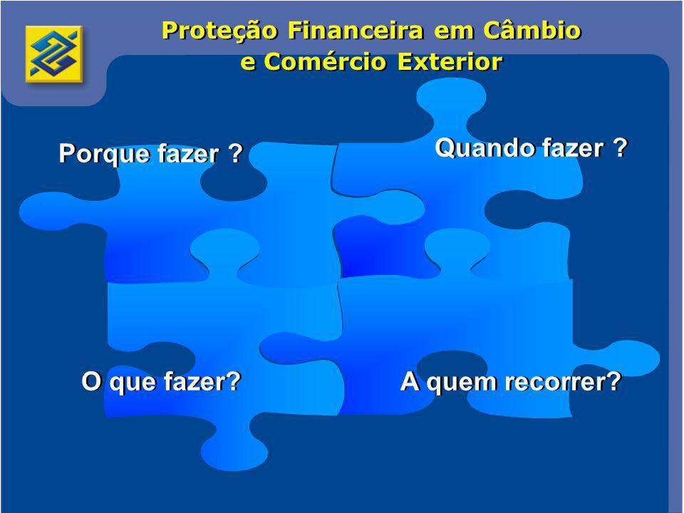 Comércio Internacional 2 Proteção Financeira em Câmbio e Comércio Exterior O que fazer.