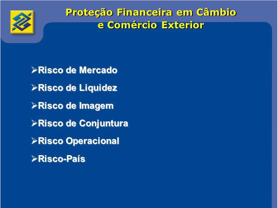 Comércio Internacional 5 Proteção Financeira em Câmbio e Comércio Exterior
