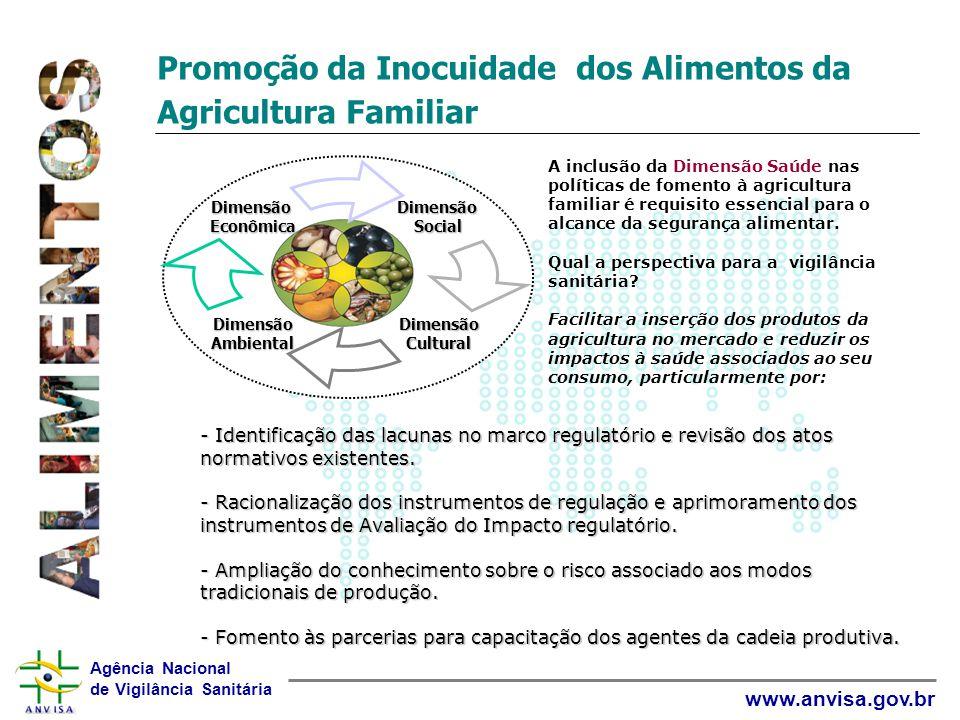 Agência Nacional de Vigilância Sanitária www.anvisa.gov.br Promoção da Inocuidade dos Alimentos da Agricultura Familiar A inclusão da Dimensão Saúde n