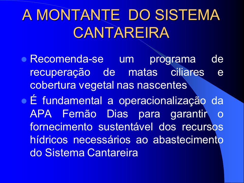 A MONTANTE DO SISTEMA CANTAREIRA Rio Jaguari, com uma área de drenagem de 1230 Km 2, principal contribuinte do Sistema Cantareira, nasce no município