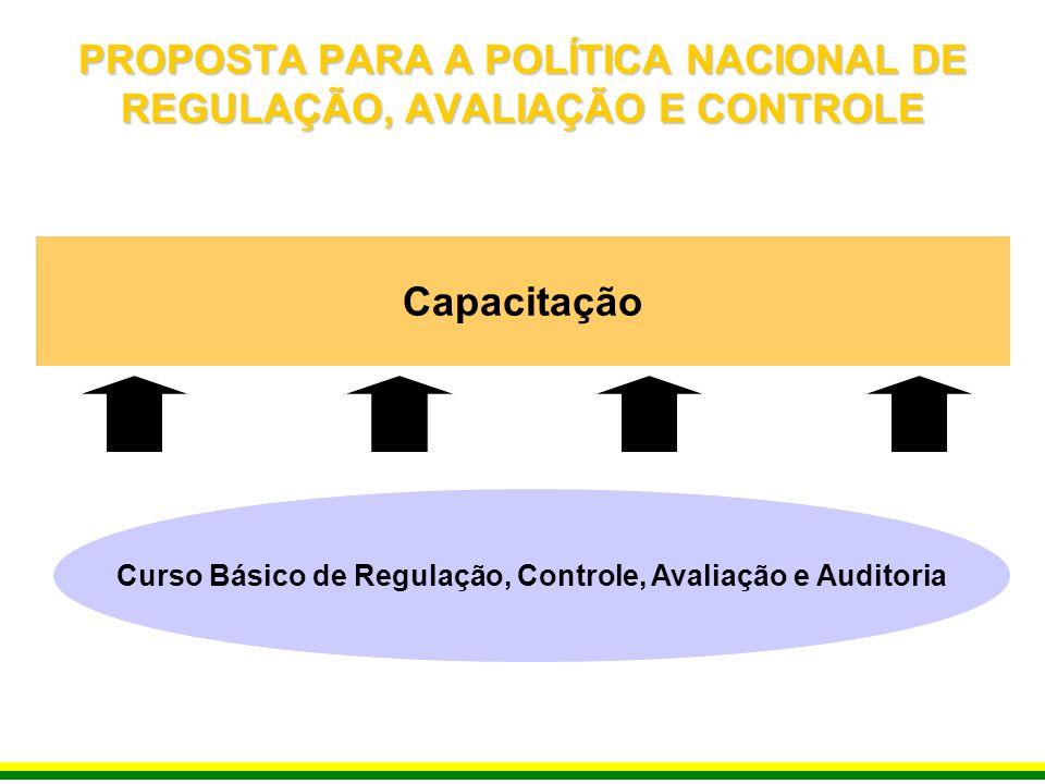 Capacitação Curso Básico de Regulação, Controle, Avaliação e Auditoria PROPOSTA PARA A POLÍTICA NACIONAL DE REGULAÇÃO, AVALIAÇÃO E CONTROLE