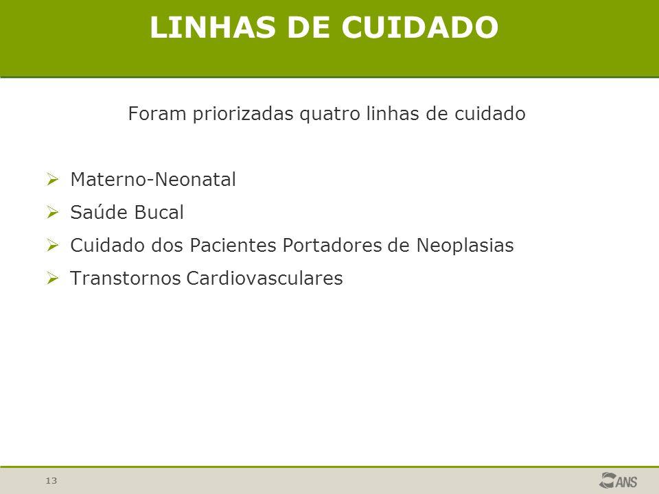13 LINHAS DE CUIDADO Foram priorizadas quatro linhas de cuidado Materno-Neonatal Saúde Bucal Cuidado dos Pacientes Portadores de Neoplasias Transtorno