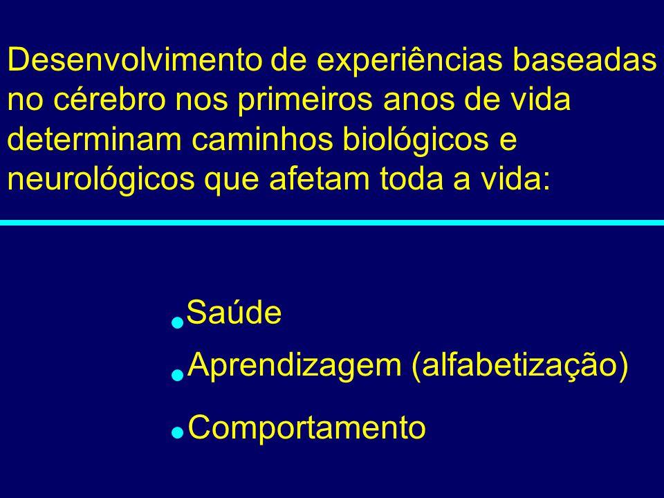03-080 Saúde Aprendizagem (alfabetização) Comportamento Desenvolvimento de experiências baseadas no cérebro nos primeiros anos de vida determinam cami