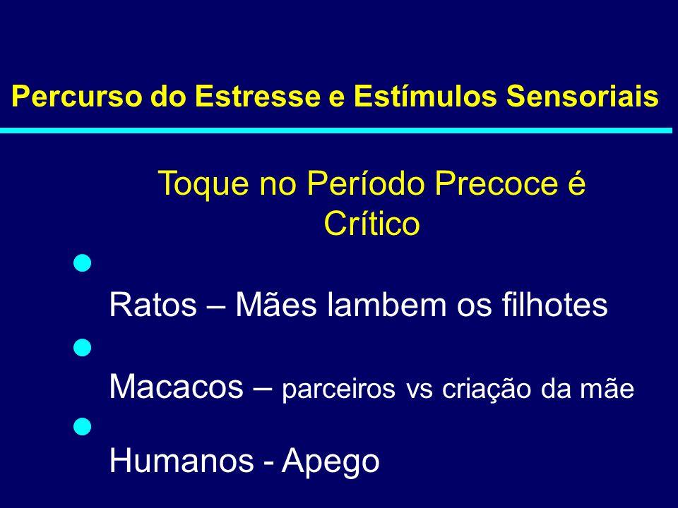 Percurso do Estresse e Estímulos Sensoriais Toque no Período Precoce é Crítico Ratos – Mães lambem os filhotes Macacos – parceiros vs criação da mãe H