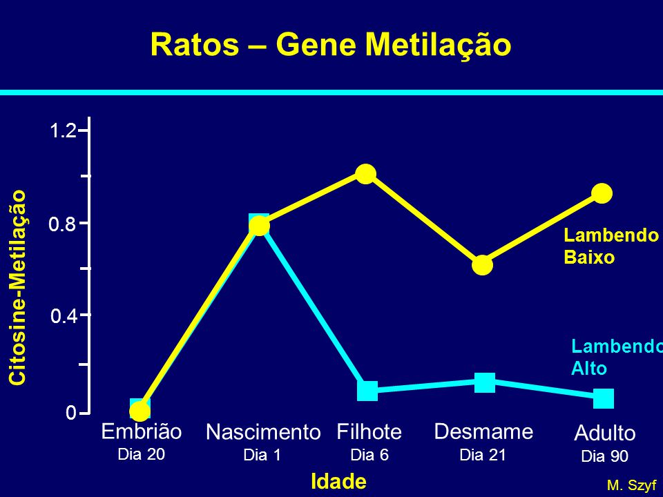 Ratos – Gene Metilação 0 0.4 0.8 1.2 Citosine-Metilação Embrião Dia 20 Nascimento Dia 1 Filhote Dia 6 Adulto Dia 90 Desmame Dia 21 Lambendo Baixo Lambendo Alto Idade M.