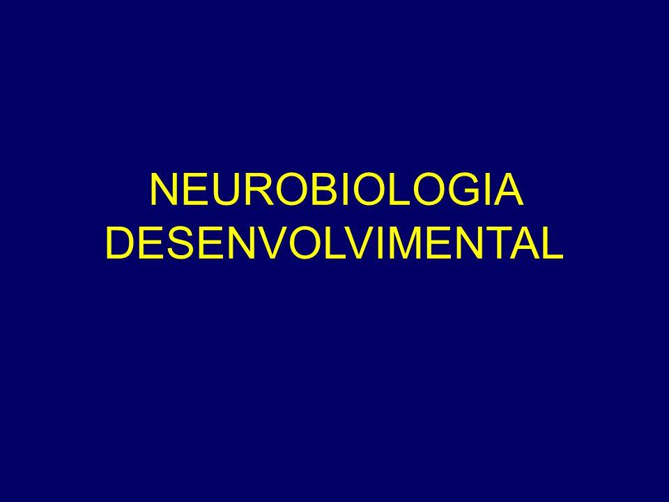 NEUROBIOLOGIA DESENVOLVIMENTAL