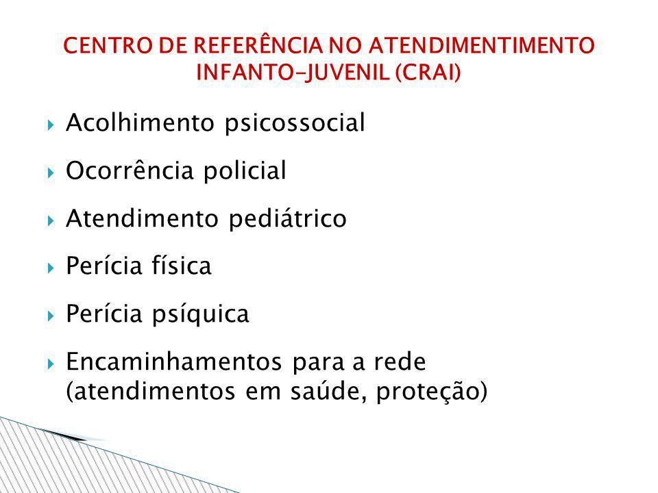 Acolhimento psicossocial Ocorrência policial Atendimento pediátrico Perícia física Perícia psíquica Encaminhamentos para a rede (atendimentos em saúde
