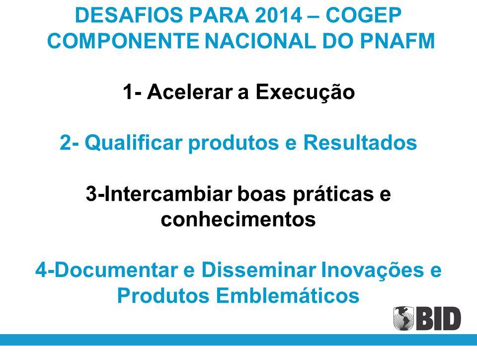 DESAFIOS PARA 2014 – COGEP COMPONENTE NACIONAL DO PNAFM 1- Acelerar a Execução 2- Qualificar produtos e Resultados 3-Intercambiar boas práticas e conh