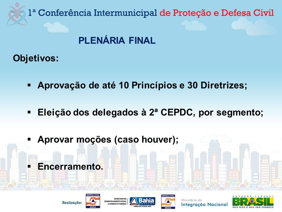 PLENÁRIA FINAL Objetivos: Aprovação de até 10 Princípios e 30 Diretrizes; Eleição dos delegados à 2ª CEPDC, por segmento; Aprovar moções (caso houver)