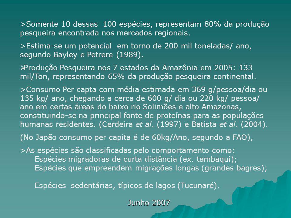 Junho 2007 >Somente 10 dessas 100 espécies, representam 80% da produção pesqueira encontrada nos mercados regionais. >Estima-se um potencial em torno