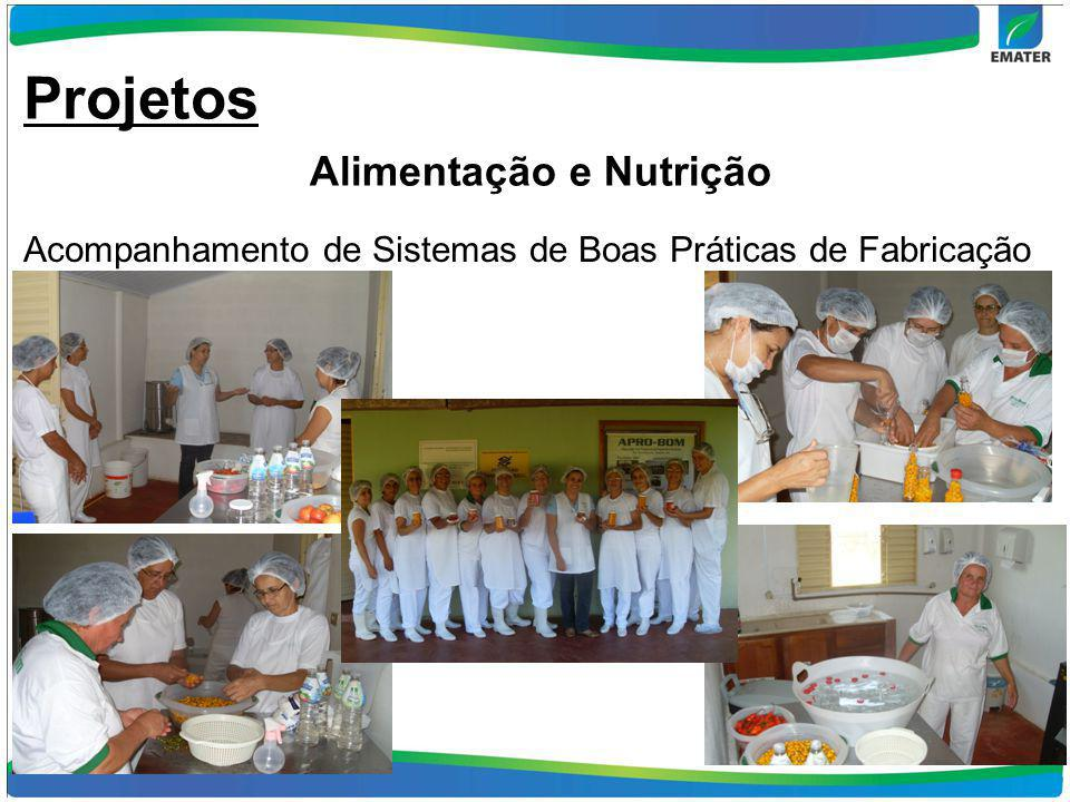 11 Acompanhamento de Sistemas de Boas Práticas de Fabricação Projetos Alimentação e Nutrição