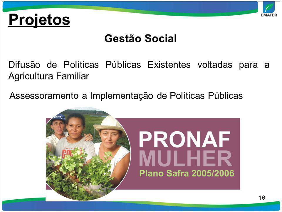 16 Difusão de Políticas Públicas Existentes voltadas para a Agricultura Familiar Assessoramento a Implementação de Políticas Públicas Projetos Gestão
