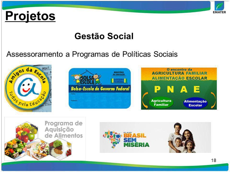18 Assessoramento a Programas de Políticas Sociais Projetos Gestão Social