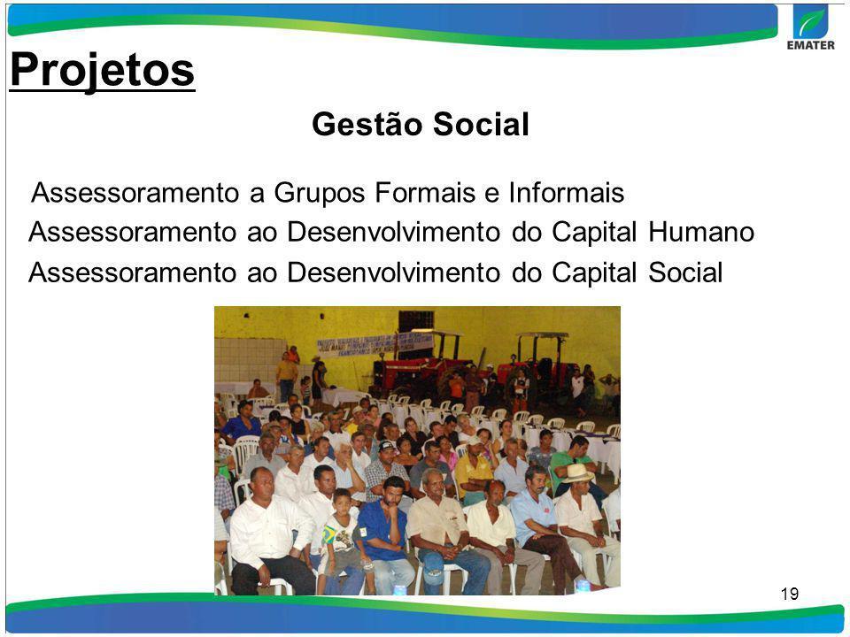 19 Assessoramento a Grupos Formais e Informais Assessoramento ao Desenvolvimento do Capital Humano Assessoramento ao Desenvolvimento do Capital Social