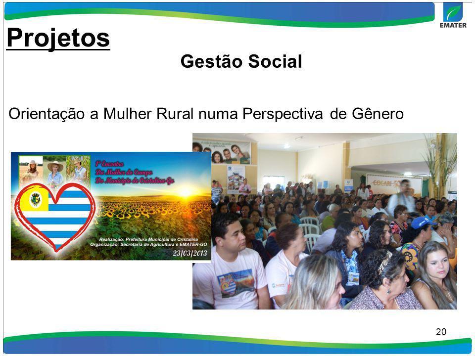 20 Orientação a Mulher Rural numa Perspectiva de Gênero Projetos Gestão Social