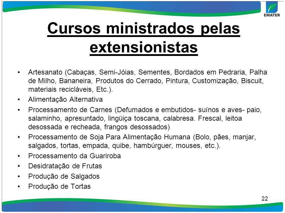 Cursos ministrados pelas extensionistas Artesanato (Cabaças, Semi-Jóias, Sementes, Bordados em Pedraria, Palha de Milho, Bananeira, Produtos do Cerrad