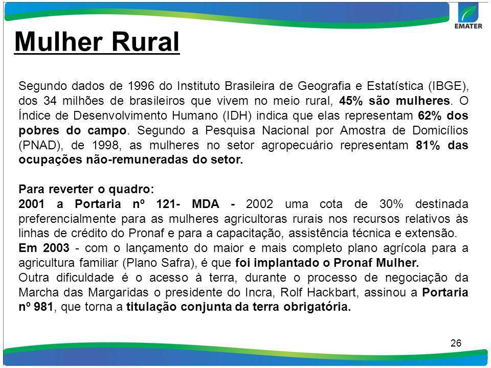 26 Mulher Rural Segundo dados de 1996 do Instituto Brasileira de Geografia e Estatística (IBGE), dos 34 milhões de brasileiros que vivem no meio rural