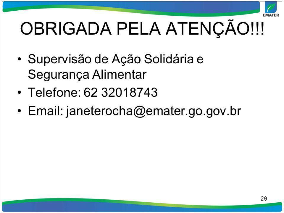OBRIGADA PELA ATENÇÃO!!! Supervisão de Ação Solidária e Segurança Alimentar Telefone: 62 32018743 Email: janeterocha@emater.go.gov.br 29