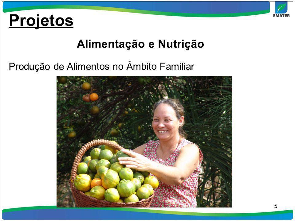 5 Projetos Alimentação e Nutrição Produção de Alimentos no Âmbito Familiar
