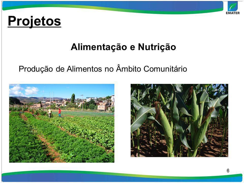 6 Produção de Alimentos no Âmbito Comunitário Projetos Alimentação e Nutrição