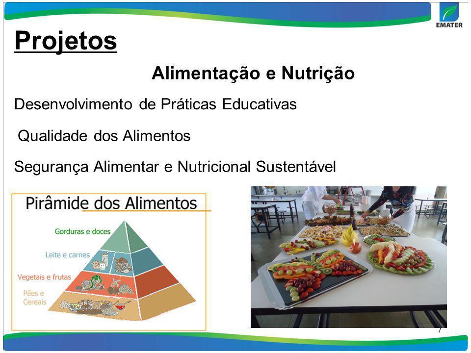7 Desenvolvimento de Práticas Educativas Projetos Alimentação e Nutrição Qualidade dos Alimentos Segurança Alimentar e Nutricional Sustentável