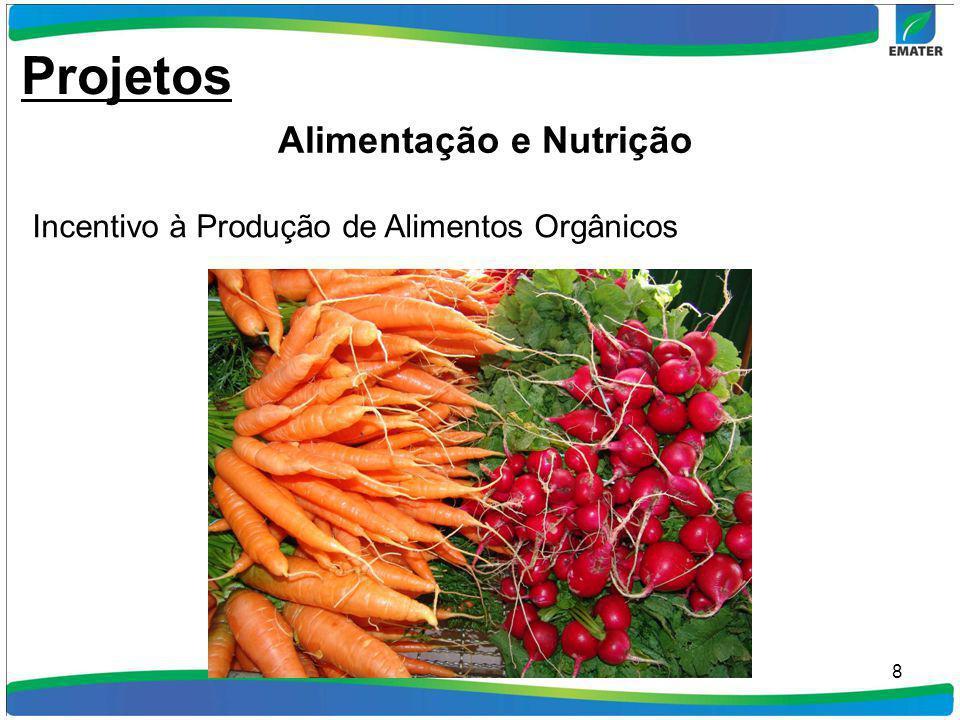 8 Incentivo à Produção de Alimentos Orgânicos Projetos Alimentação e Nutrição