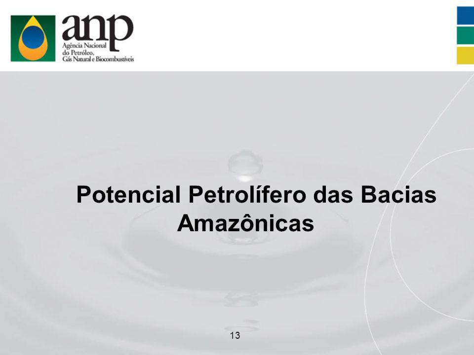 13 Potencial Petrolífero das Bacias Amazônicas