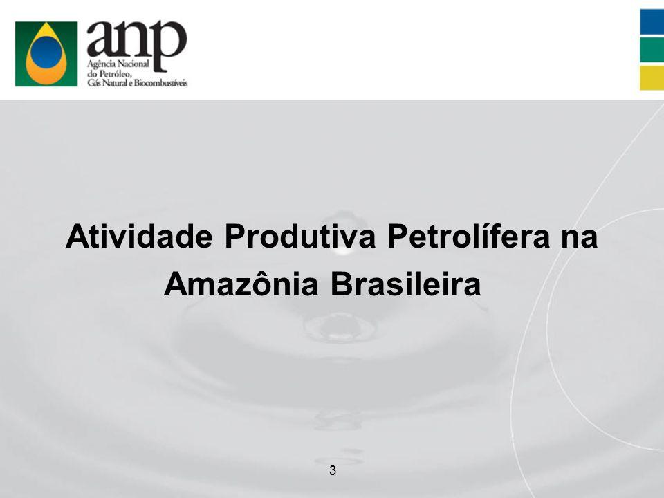3 Atividade Produtiva Petrolífera na Amazônia Brasileira